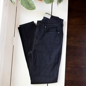 Everlane 25 Regular Skinny Jeans